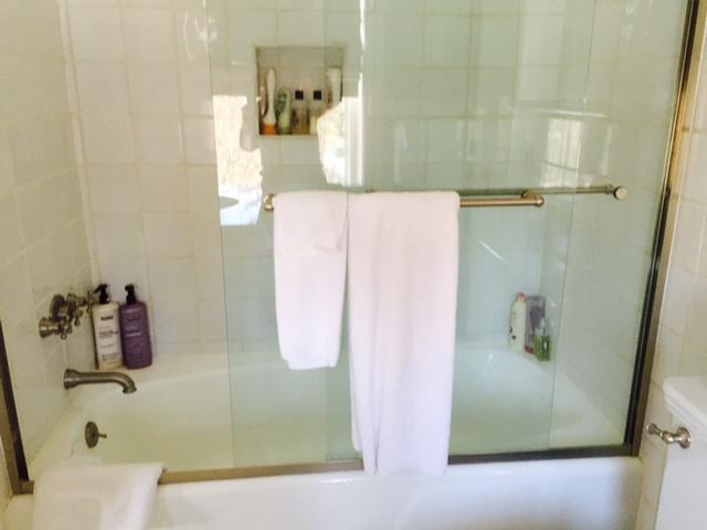 Susan Marocco Interiors - Bathroom Renovation - Bathtub Before