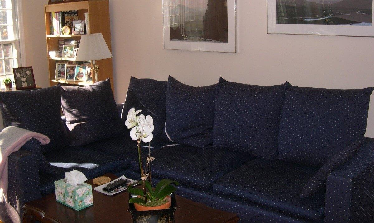Family Room Designs by Susan Marocco Interiors - 1218