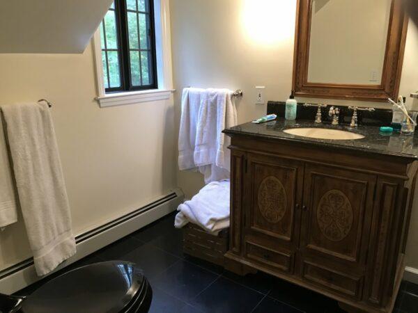Bathroom Sink Renovation - Susan Marocco Interiors